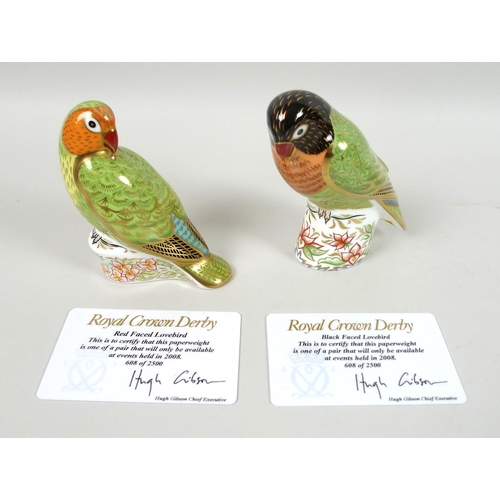 18 - A group of Royal Crown Derby paperweights, comprising Black Faced Love Bird, limited edition 608/250...