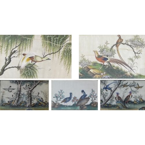 171 - Chinese School (19th century): a pair of paintings on silk of birds, depicting cranes, pheasants and...