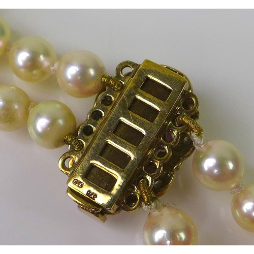 239 - A two strand pearl necklace with 9ct gold ruby and diamond clasp, the pearls approximately 5mm diame...