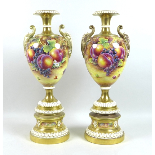 70 - A pair of large modern Royal Worcester pedestal vases, foliate clasped twin handles, decorated with ...