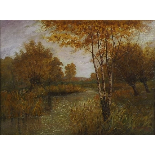 192 - Arthur Massey (British, 19th / 20th century): woodland river, signed and dated 1910 lower right, oil...
