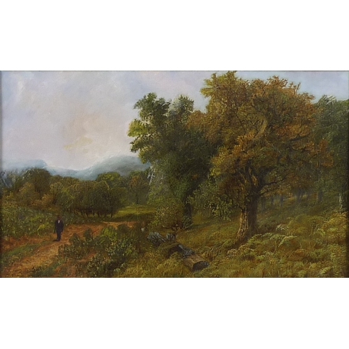 182 - British School (19th century): a figure on a woodland path, initialled JHT lower left, oil on canvas...
