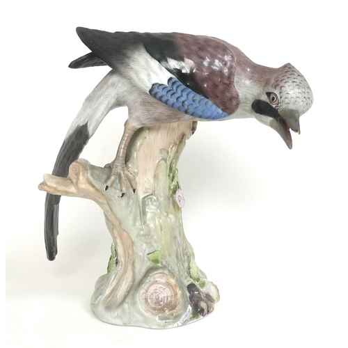44 - A Carl Thieme model of a Jay (Eichelhäher), mid 19th century, modelled after Meissen standing on a b...