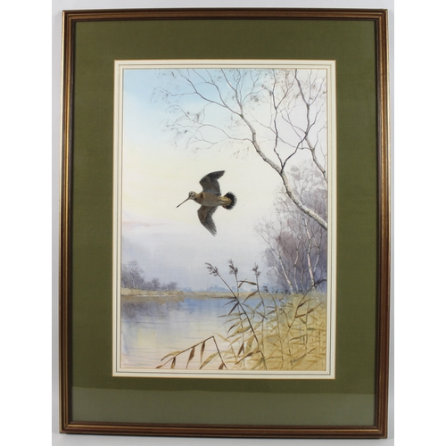 252 - JC Harrison / John Cyril Harrison (British, 1898-1985): snipe in flight over a Norfolk river and mar...