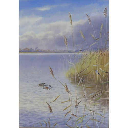 263 - Philip Rickman (British, 1891-1982): Norfolk Broads, a river scene with rush beds, two ducks and fou...
