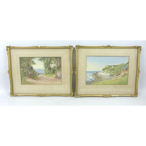 247 - Charles J. Adams (British, 1859-1931): 'A Cove, Isle of Wight', signed lower right, titled verso, wa...