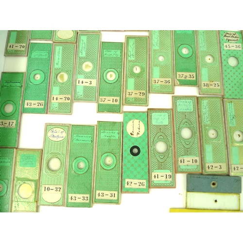 121 - A collection of eighty-four 19th century microscope slides, including insect and animal samples, eac...