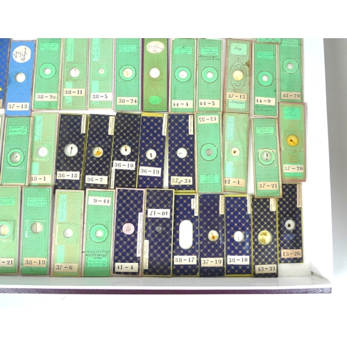 123 - A collection ninety-five 19th century microscope slides, including insectand mammal samples, many wi...