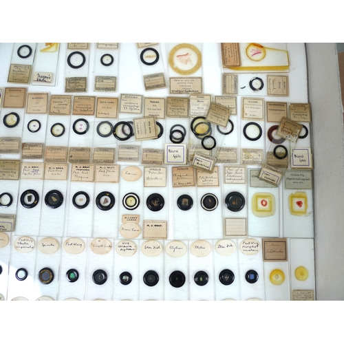 119 - A collection of over 150 vintage microscope slides, with some by Flatters and Garnett, including sam...