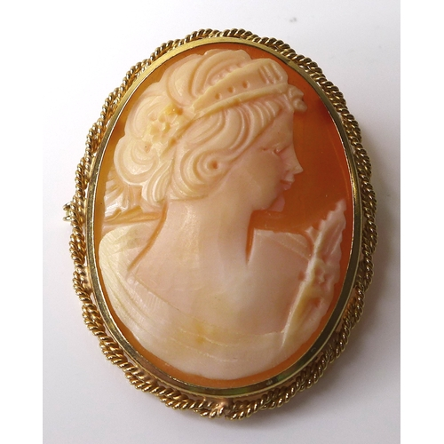 160 - A 9ct gold mounted cameo brooch, 4 by 3.1cm, 6.4g....