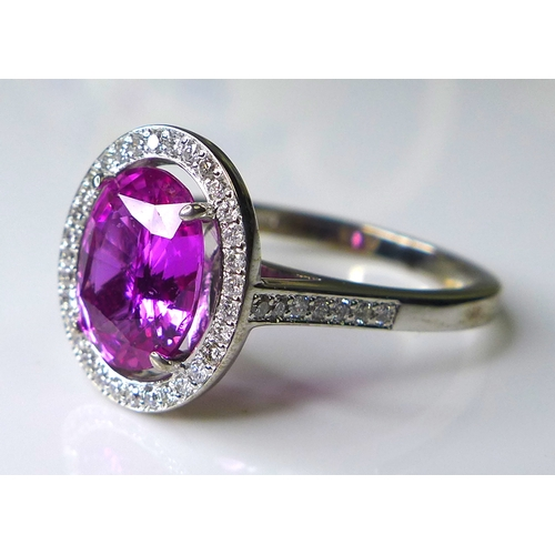 329 - An impressive, 18ct white gold, pink sapphire and diamond dress ring, the large oval cut deep rose c...
