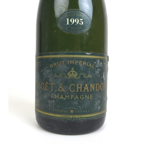 218 - Vintage Champagne: a bottle of Moët & Chandon Brut Imperial Champagne, Vintage 1995....