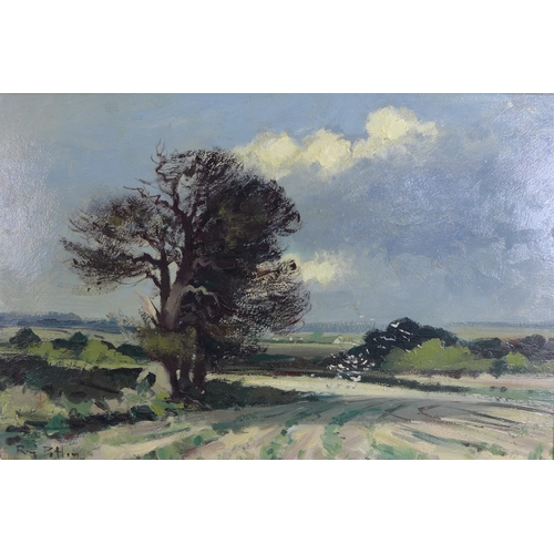 262 - Roy Petley (British, b. 1951): 'The Broken Bough', signed lower left, oil on board, 38.5 by 59cm, fr...