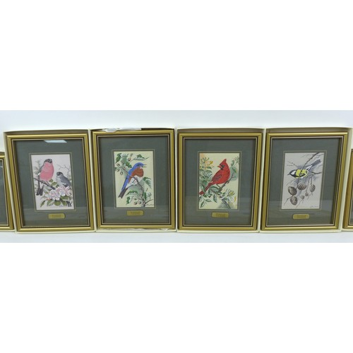 107 - A group of Cash's jacquard silk pictures, depicting various species of birds, each glazed and framed...
