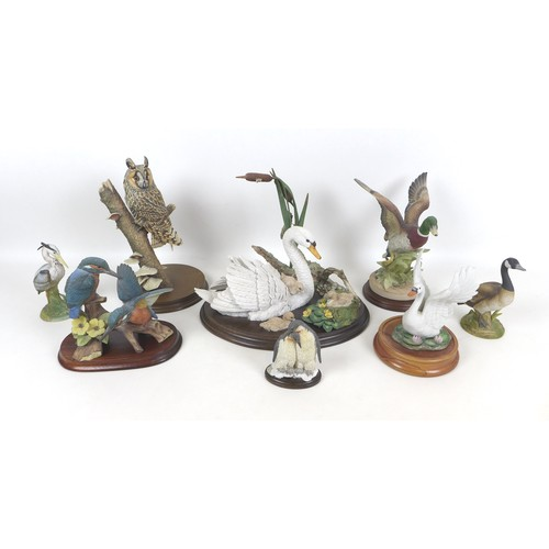 19 - A collection of eight wildlife figurines, comprising a Border Fine Arts long eared owl, 20 by 19 by ...