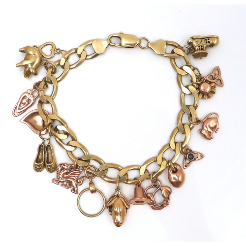 252 - A 9ct yellow gold charm bracelet, kerb link with lobster claw clasp, fitted with sixteen 9ct yellow ...