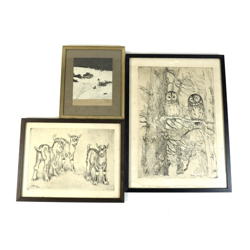 193 - Three continental country scene and wildlife etchings, Falk Bang, 'Two owls' etching, 38.5 by 28.5cm...