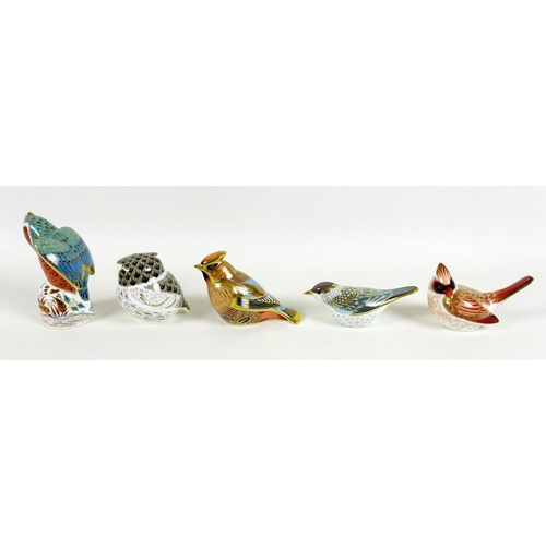 46 - A group of ten small Royal Crown Derby paperweights, all modelled as birds, comprising 'Waxwing', ex...