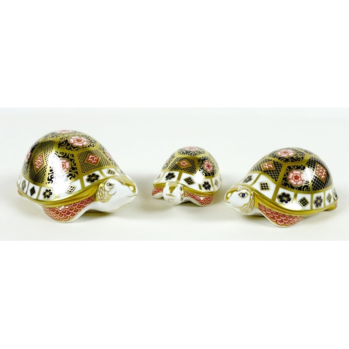 22 - A group of three Royal Crown Derby paperweights, all modelled as tortoises 'The Yorkshire Rose Torto...