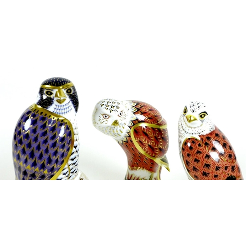 48 - A group of three Royal Crown Derby paperweights, all modelled as birds of prey, comprising 'Red Kite...