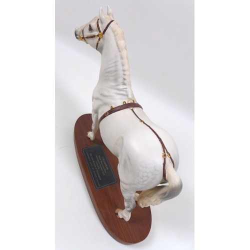 119 - A Beswick 'Connoisseur Model' horse figurine modelled as 'Champion, Welsh Mountain Pony, Gredington ...