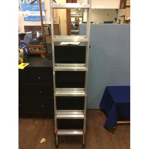 42 - Set of ladders...