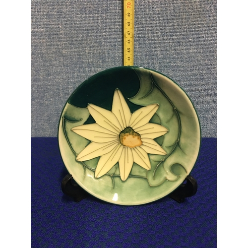 21 - Moorecroft pottery daisy pin dish signed to base....