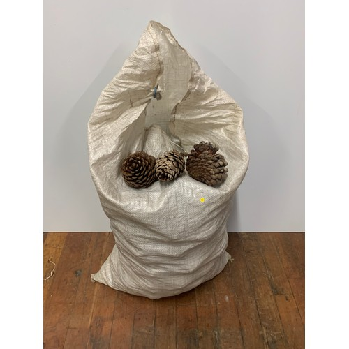 143 - Bag full of pine cones...