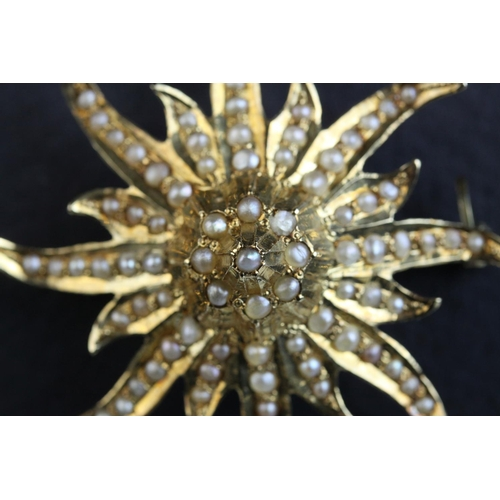 59 - Seed pearl 14ct gold tiered sunburst pendant brooch, full set with seed pearls, later safety chain, ...