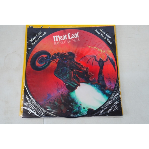 1060 - Vinyl - Around 20 Picture discs featuring Meat Loaf, Saxon, Iron Maiden, The Who etc, vg+