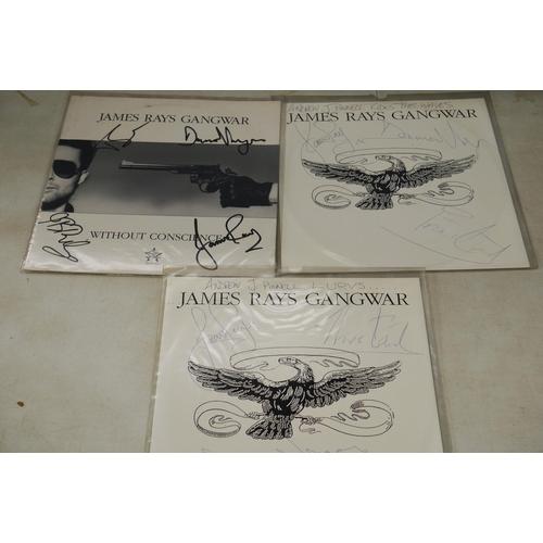 970 - Vinyl Autographs - Nine James Ray LPs, 12