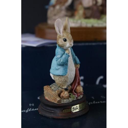 35 - Fourteen boxed Beatrix Potter Border Fine Arts resin  figures to include Mrs Tiddy Winkle , Ltd edit...