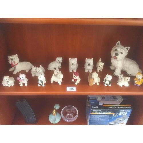 385 - Quantity of Westie Dogs...