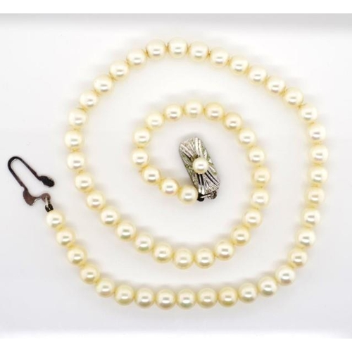 266 - Mikimoto pearl necklace with mark to fish hook clasp. Approx pearl size 5.7mm, necklace length 38cm....