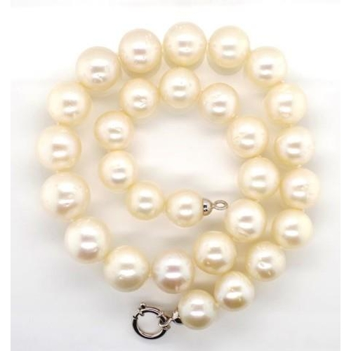 273 - South Sea pearl necklace approx 29x 12-16mm near round pearls with a good lustre and a 18ct white go...