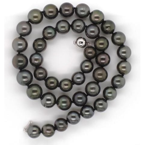 31 - Tahitian black pearl necklace with 14ct white gold and diamond set clasp. Approx 41x 9-11mm black pe...