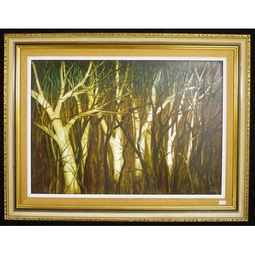 459 - Kevin Charles (Pro) Hart (1928-2006) Swamp Trees, oil on board, signed lower right. (41cm X 59cm app...