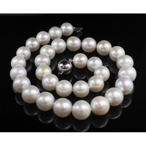 60 - Freshwater pearl necklace with a 14ct white gold ball clasp approx 12.2mm -14.3mm cultured pearl siz...
