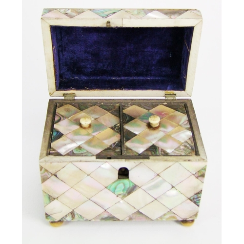 126 - A 19th Century mother-o'-pearl tea caddy, the interior with twin lidded divisions, on ball feet, wid...