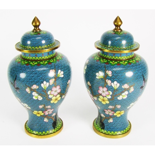 166 - A pair of cloisonne vases and covers, of baluster form, decorated with trees in blossom, height 20cm...