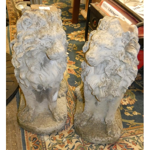 4 - A pair of concrete seated lions, height 58cm...