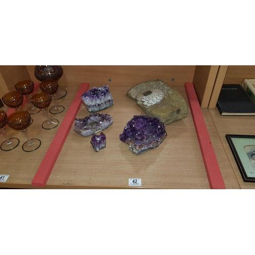 42 - Collection of geodes and a nautilus fossil...
