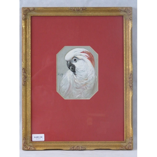992 - Henry Stacy Marks (1829-1898) watercolour study of a cockatoo, initialled ''H.S.M.'' Middle left; si...