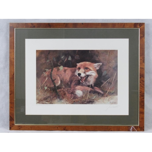 2 - John Trickett (20th century) limited edition print of a fox cub, numbered 604/850; signed in pencil ...