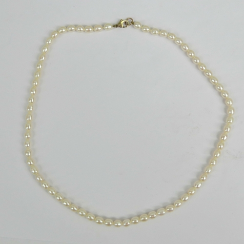 109 - A set of pearls having 9ct gold clasp, measuring 42cm in length....