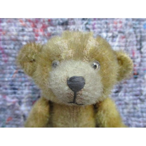 48 - A 1920s/30s small jointed teddy bear with black and white glass eyes, short golden mohair and white ...