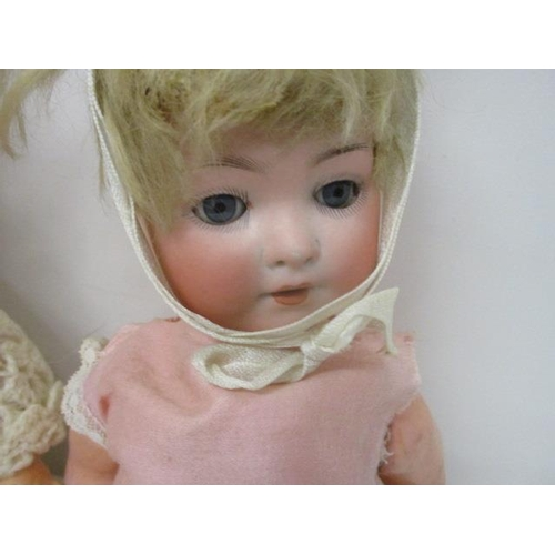 30 - A selection of bisque headed dolls, all A/F, to include a Burggrub Baby 4, Germany, Heubach Kopplesd...