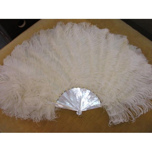 12 - An early 20th century feather fan with mother of pearl handle...