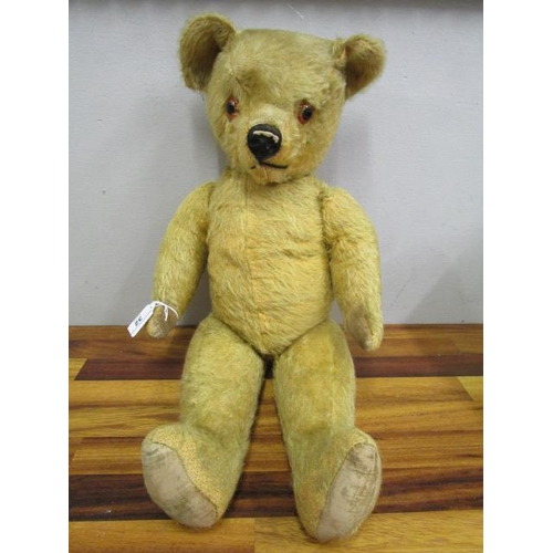 32 - A 1950s English jointed teddy bear with plastic amber eyes, moulded nose (squashed), worn velveteen ...