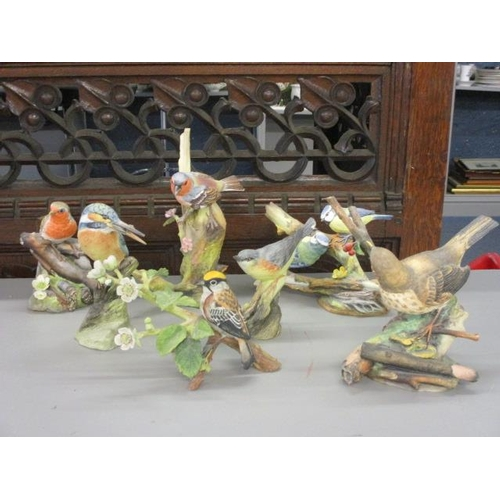 6 - Seven RSPB Franklin porcelain and Coalport bird figures to include a robin and a chaffinch...
